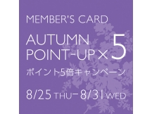 Member's Card AUTUMN POINT-UP x 5